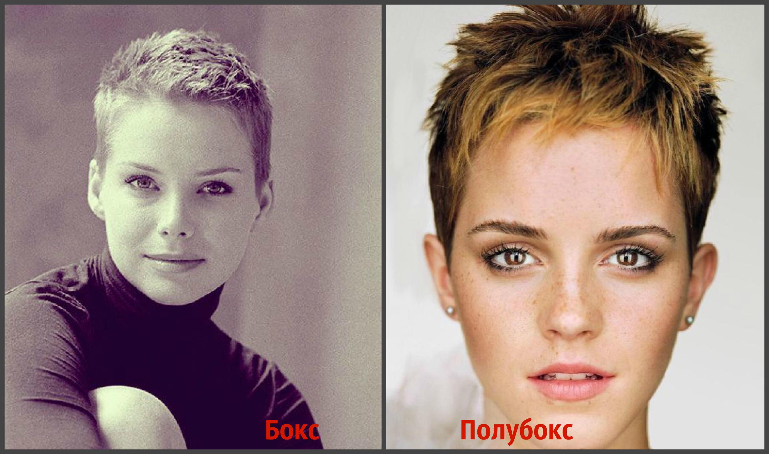 Причёски женские полубокс фото