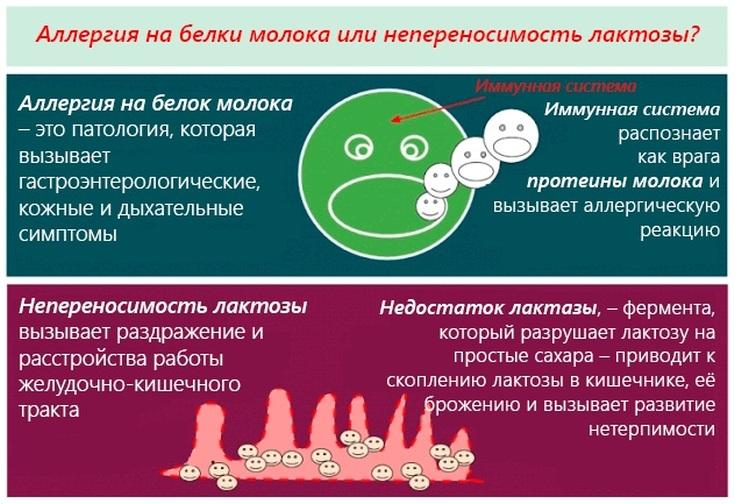 Селенцин отзывы врачей трихологов
